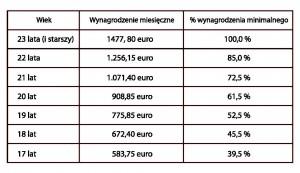 Tab.2  Minimalne stawki wynagrodzeń brutto od lipca 2013 roku w Holandii - źródło: opracowanie własne