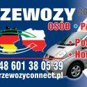 BUSY-POLSKA---HOLANDIA-BEZ-PRZESIADEK-TANIO-SZYBKO-Z-ADRESU-NA-ADRES-48-601380539